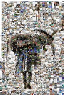 donkey photo mosaic